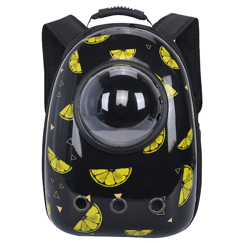 กระเป๋าเป้แคปซูลอวกาศ