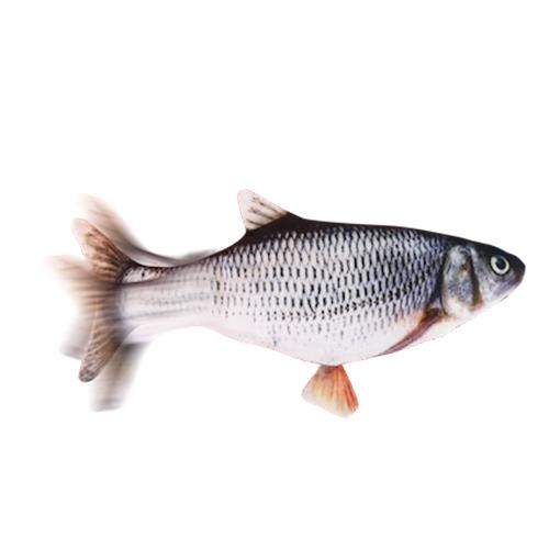 ปลาดิ้น