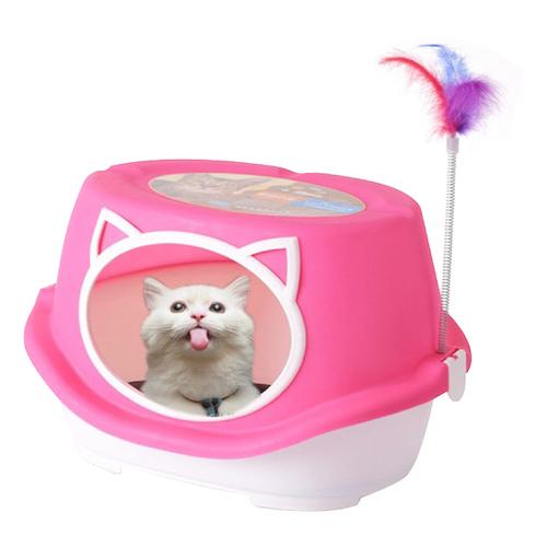 ห้องน้ำแมว