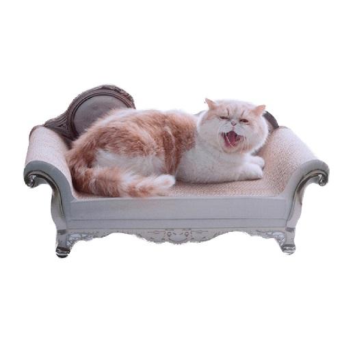 โซฟาแมว